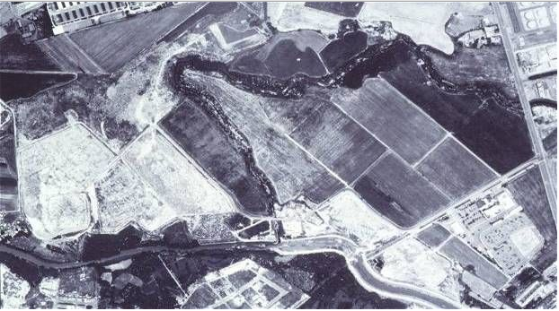 This 1990 aerial photograph shows the large sugarcane fields and garbage dumps